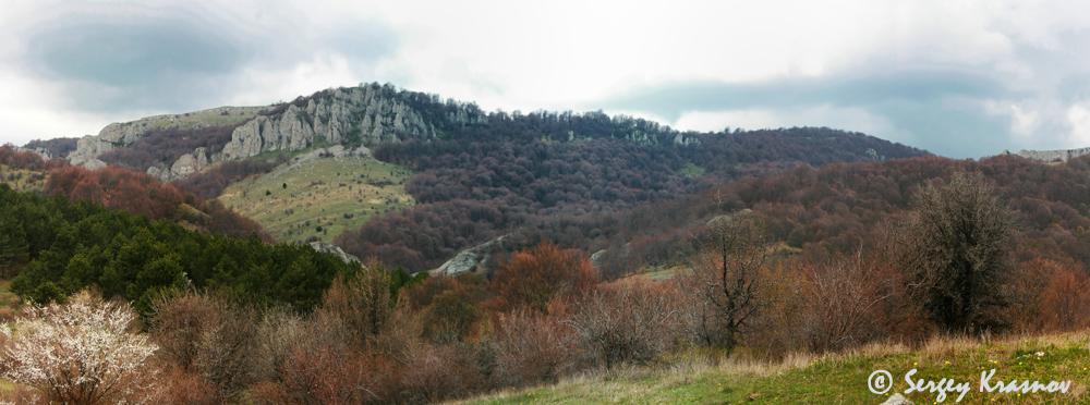 13_panorama.jpg