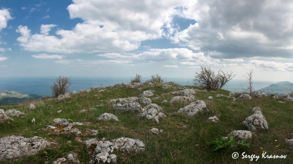 9_panorama.jpg